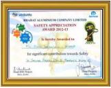 BALCO Safety Award (2013)
