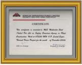 Simplex Infrastructure Ltd. Safety Award